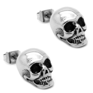 Polished Stainless Steel Skull Earrings