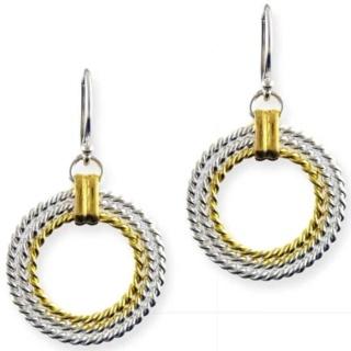 Paloma Gold & Silver Earrings