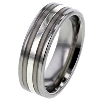 Platinum Inlaid Titanium Ring