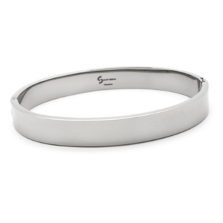 Distinct Polished Titanium Bangle