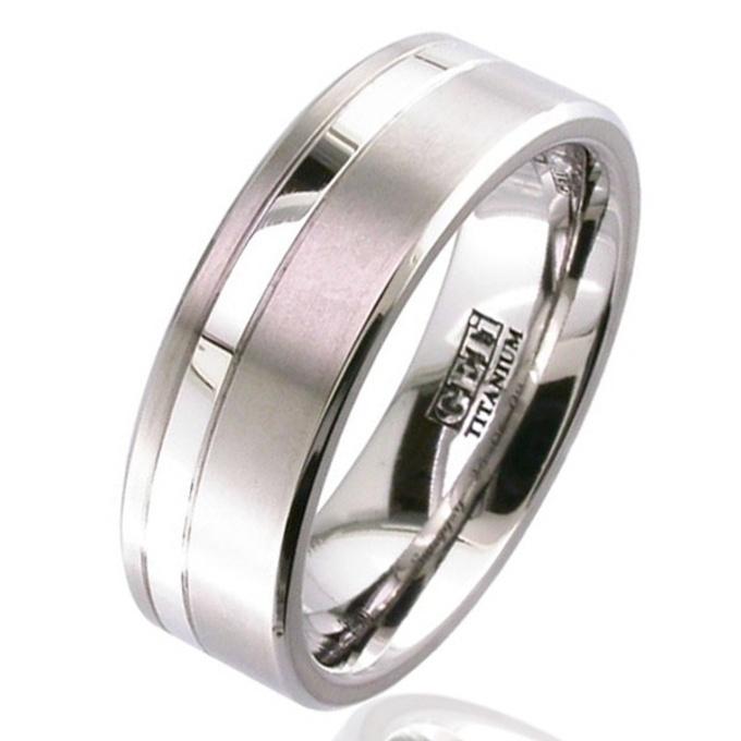 Platinum Titanium Wedding Ring Titanium Mens Womens Partner