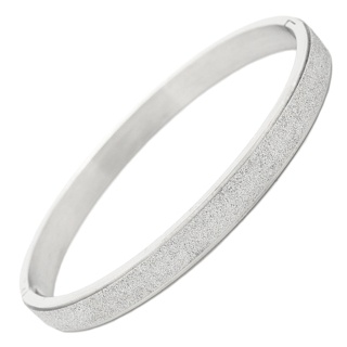 Sparkling 6mm Stainless Steel Bangle