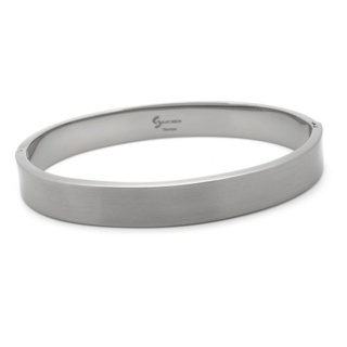 Distinct Satin Titanium Bangle