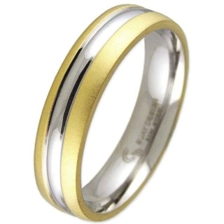 Golden Swell Steel Ring
