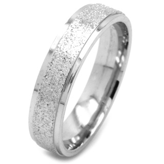 Stainless Steel Sparkling Stainless Steel Ring