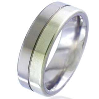White Gold Inlaid Titanium Wedding Ring